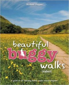 Punk - Beautiful Buggy Walks