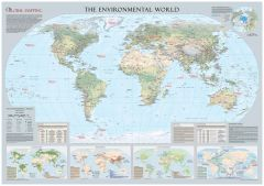 Environmental World Wall Map - Large Map