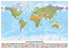 World Environmental (Miller projection) Map